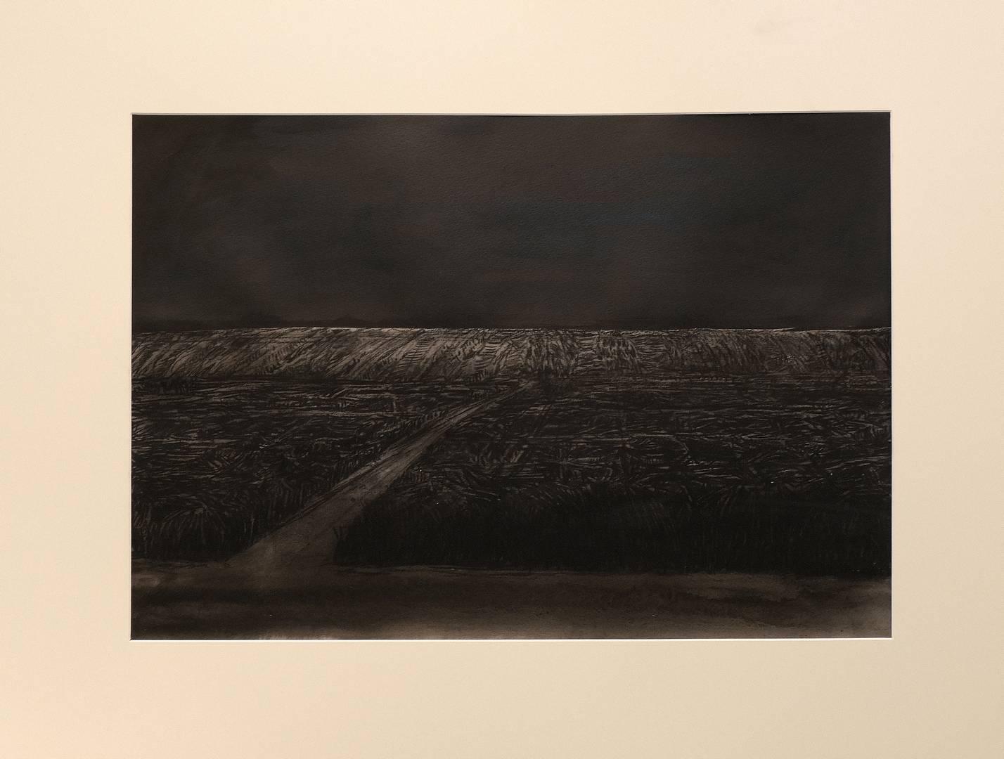 Sait Toprak 45x65 cm, Kağıt üzerine füzen