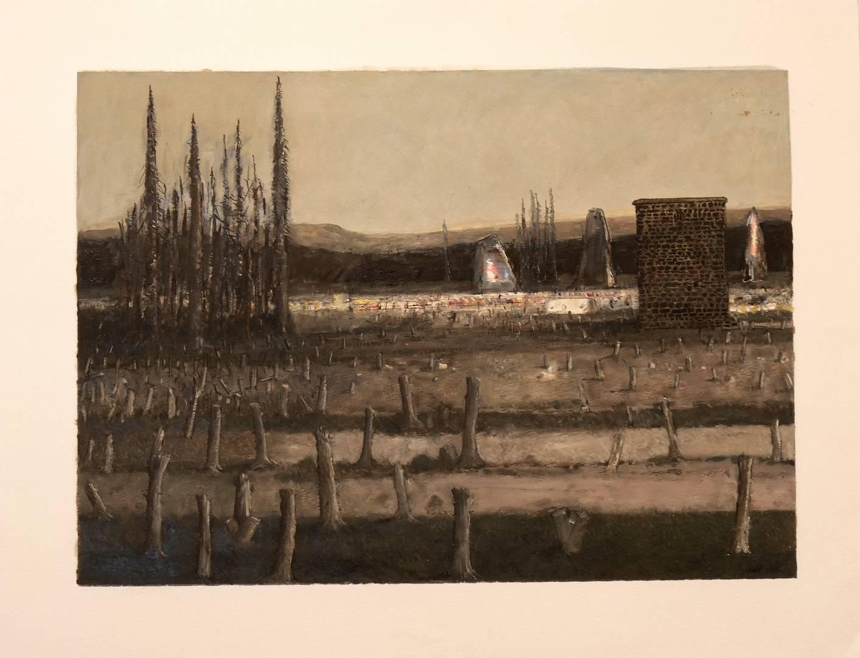 Sait Toprak, A story about isolate nature, 40x55 cm,Kağıt üzerine karışık teknik, 2012 (3)